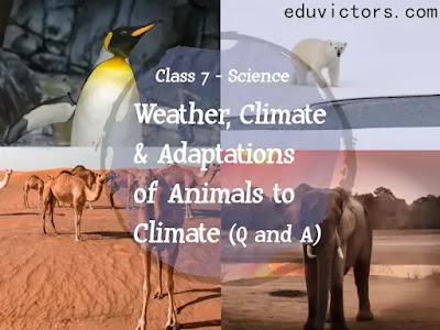 CBSE Class 7 - Science - CH 7 - Weather, Climate and Adaptations of Animals to Climate (Q and A - Part 2)(#eduvictors)(#cbse2020)(#class7Science)