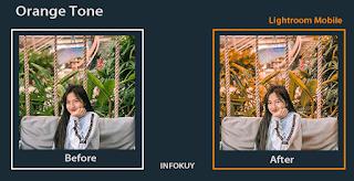 Tutorial Lightroom Orange Tone Part 2