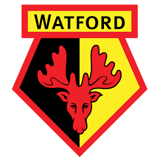 Logo Watford FC DLS