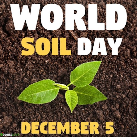 (Latest) World Soil Day 2020 Images, Poster, Photos, Wallpaper