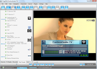 Download ProgDVB and ProgTV x32 for XP, Vista, Windows 7, Windows 8. x32/x64 OS 7.10.3a