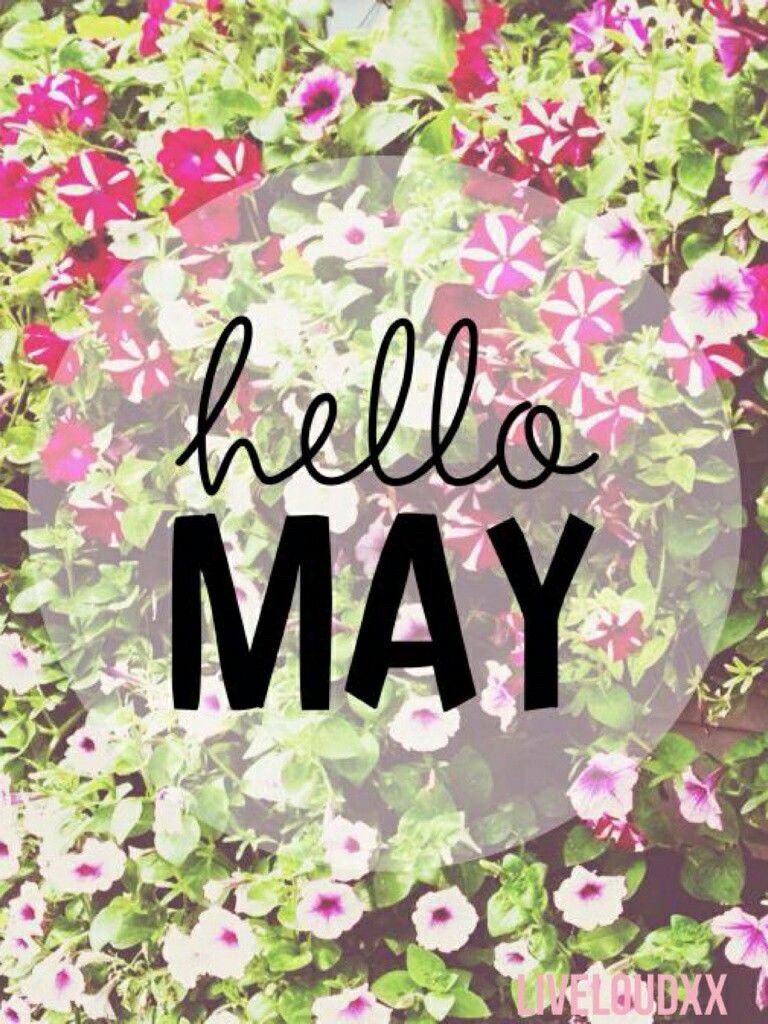 My May Goals ✨