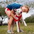 6 Major Dog-Walking Mistakes