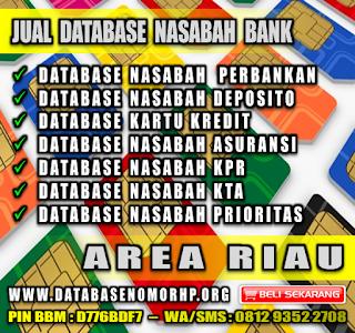 Jual Database Nasabah Pemilik Kartu Kredit Area Riau