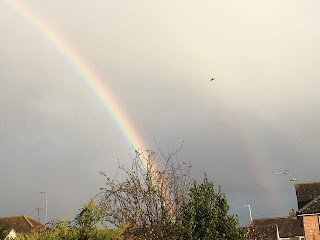 Bright rainbow in grey sky, with a paler second rainbow outside it.
