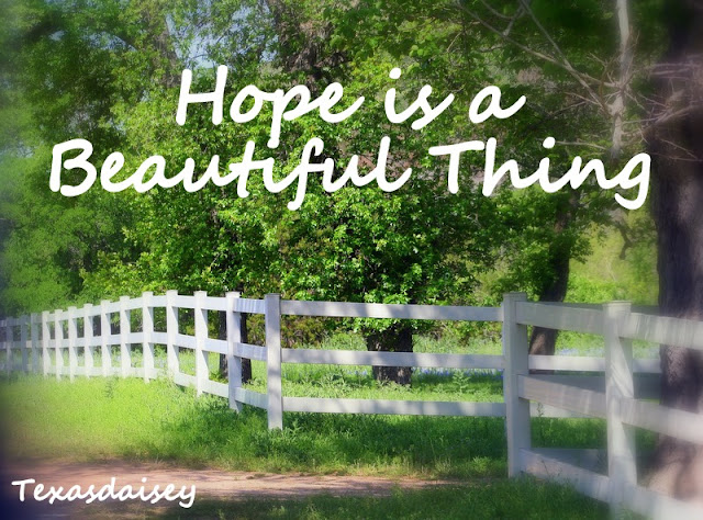 Help int the battle against mesothelioma: Hope is a beautiful thing