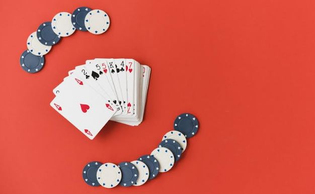 netent top video game developer best casino software gambling company