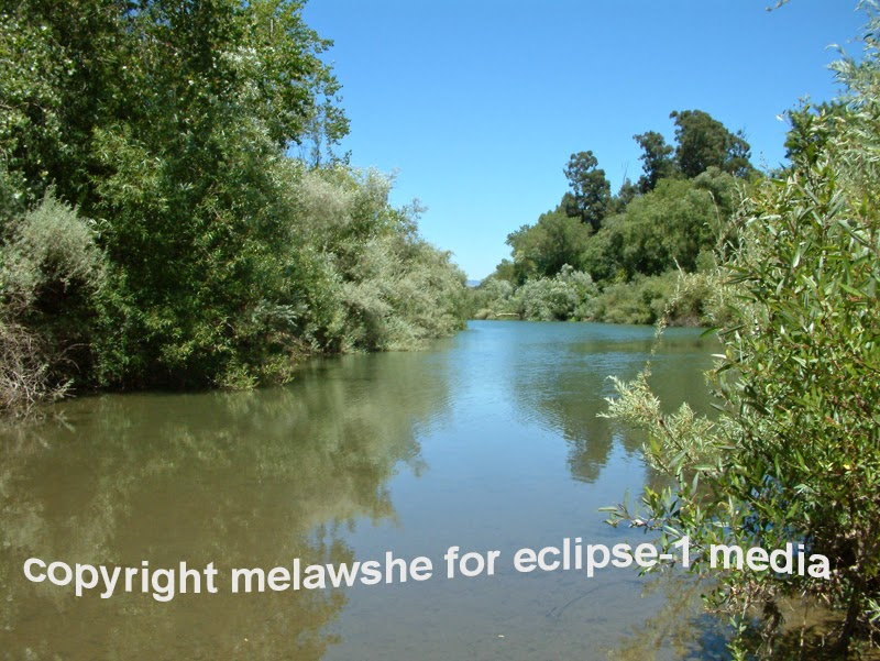 Minutes From The Russian River 120