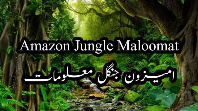 Amazon-forest-jungle-urdu-hindi