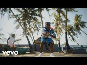 Download Video: DJ Spinall Ft Fireboy DML – Sere