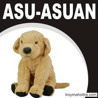 Asu-Asuan
