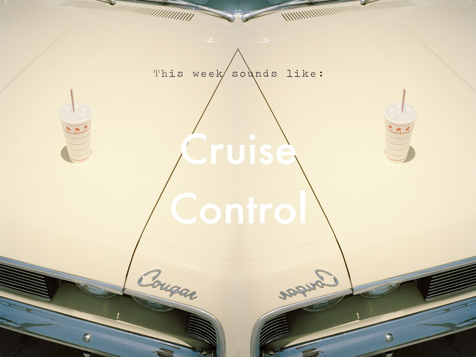 Playlist No. 3 Cruise Control || Monica Moraru photography || Allegory of Vanity
