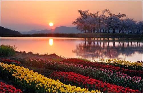 3 Tempat Wisata di Korea Selatan yang Populer