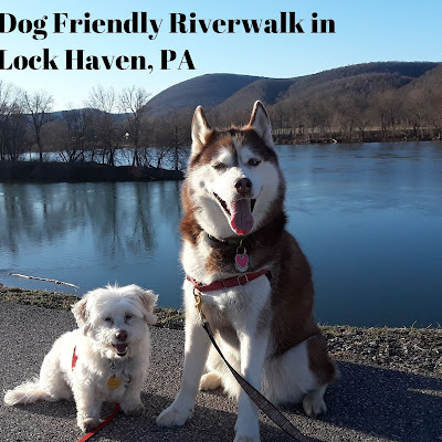 Dog friendly Lock Haven, Pennsylvania has a beautiful Riverwalk that is 2.25 miles long. Great exercise for you & your dog.  Pet friendly travel destination in PA. Dogs. Dog friendly. Pets. Pet travel.