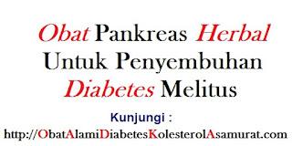 Obat pankreas herbal untuk penyembuhan diabetes melitus