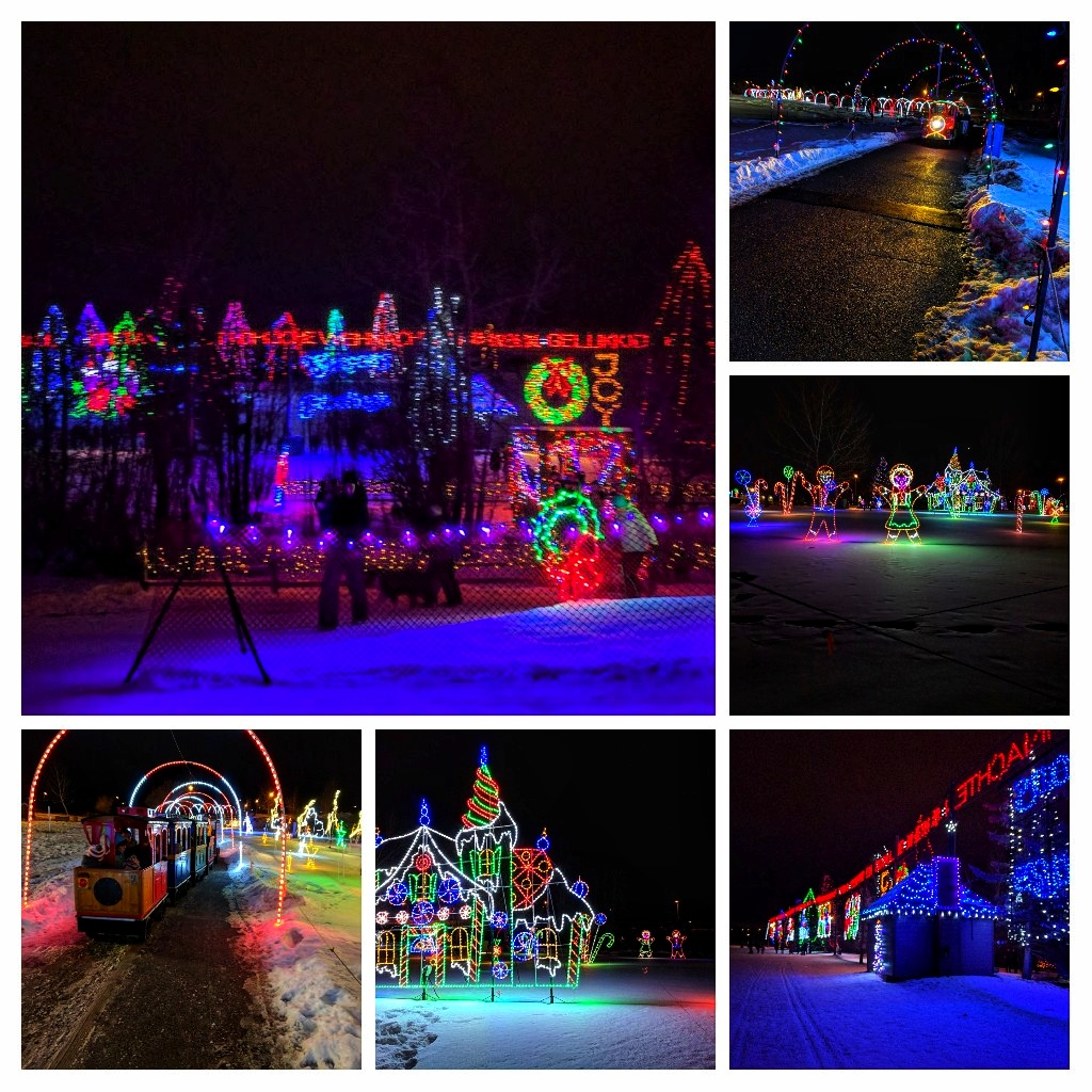 Calgary Zoo Lights Vs. Lions Festival Of Lights Vs