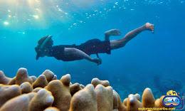 aktifitas snorkeling di pulau harapan