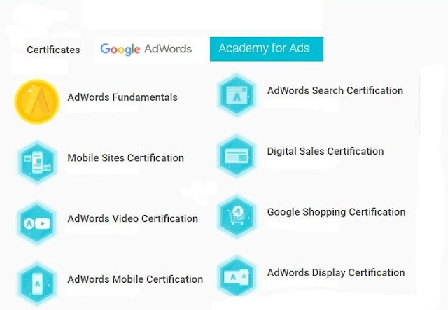 SEO SEM consultant certified, Adwords certified, google Adwords IQ certified