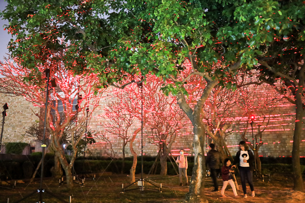 台灣國際光影藝術節「黑暗之光」8件絕美光影裝置展現聲光之美