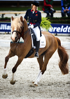 Get Started In Dressage With These Helpful Tips