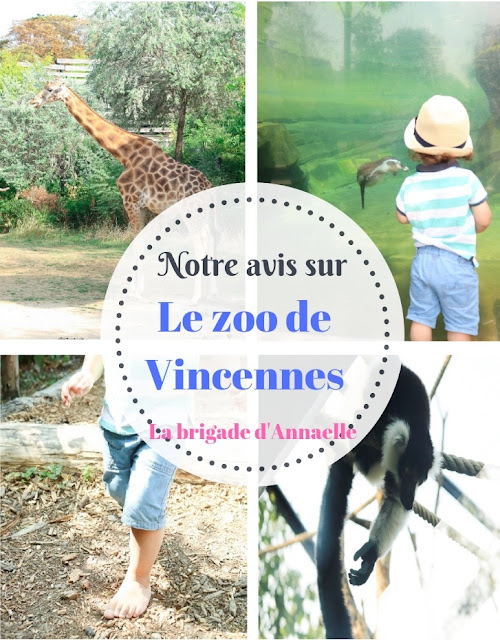 avis zoo de vincennes