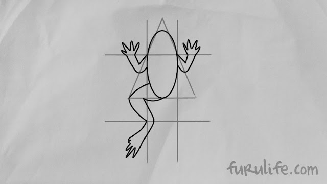 How to draw frog step 05