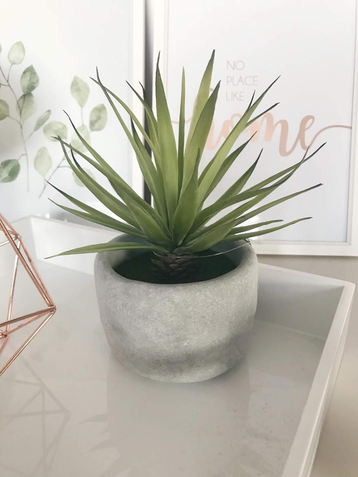 Image of Artificial Yucca Pot Plant, Maisons Du Monde