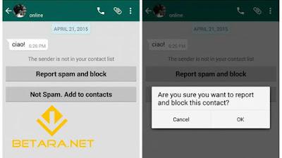 Akun Whatsapp di Blokir Pengguna Lain | Ini Cara Mengetahuinya!