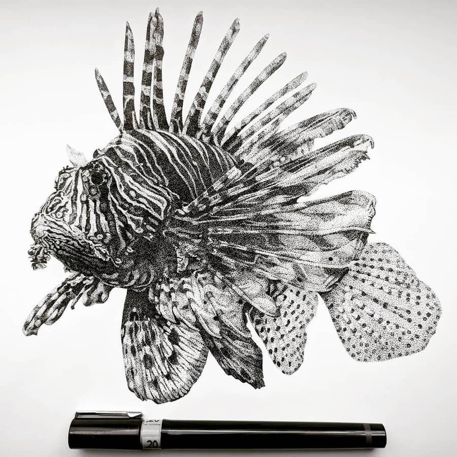 05-Pterois-Lion-Fish-Carole-Levy-www-designstack-co