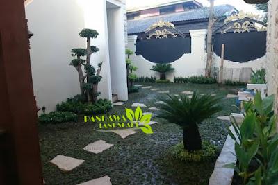 jasa taman rumah di kota surabaya