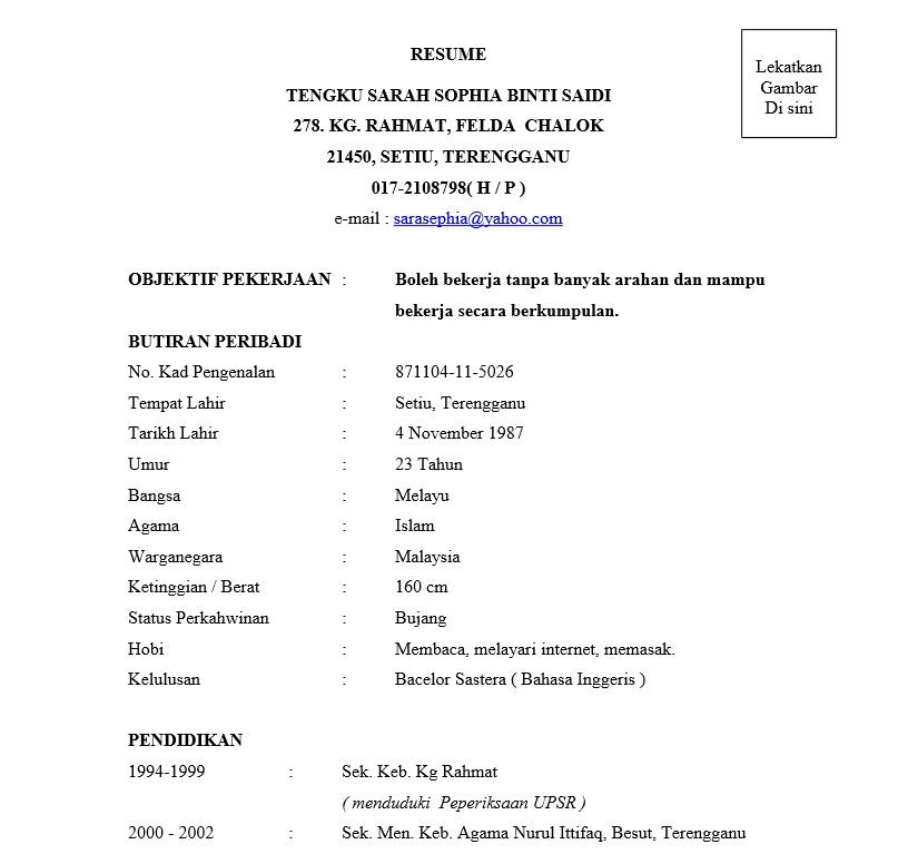 3 contoh resume terbaik  muatturun  u0026 edit