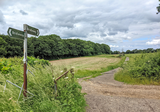 The view back along Harpenden Rural bridleway 1