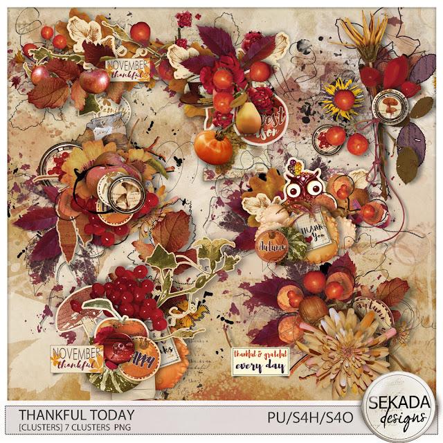 https://www.digitalscrapbookingstudio.com/digital-art/element-packs/thankful-today-clusters/