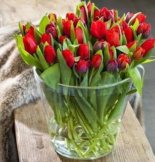 anthemionflowers.gr τουλίπες