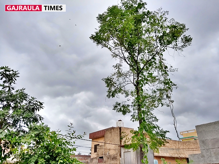 cloudy-weather-in-gajraula