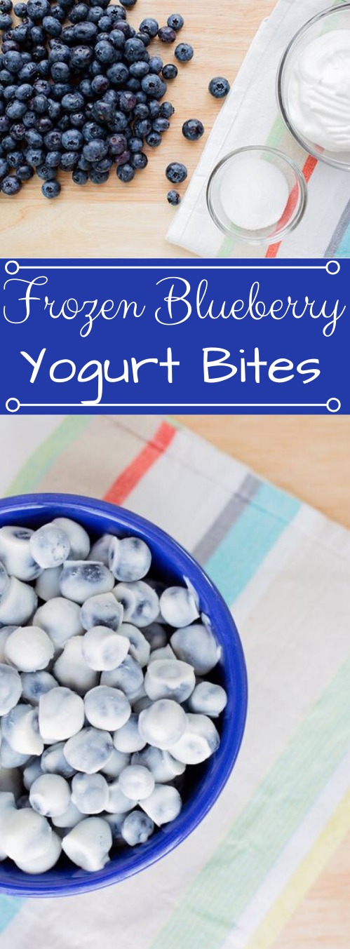 Frozen Blueberry Yogurt Bites #healthydiet #easy #blueberry #yogurt #paleo