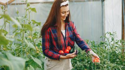 10 Tips Untuk Memulai Pertanian Hobi