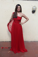 Actress Sana Khan Latest Pos in Georgius Spicy Red Long Dress at the Interview  0018.jpg