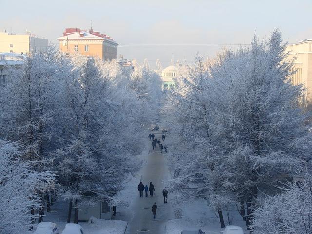 В Мурманске выпал снег