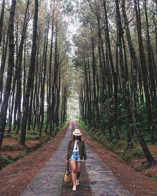 Top Selfie Pinusan Kragilan