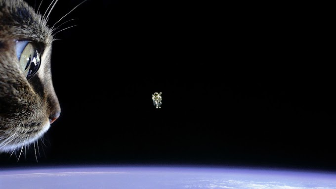 Humor Astronauta