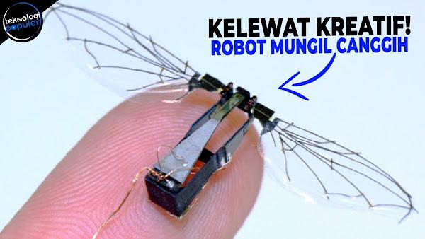 5 Robot Canggih Yang Berukuran Kecil