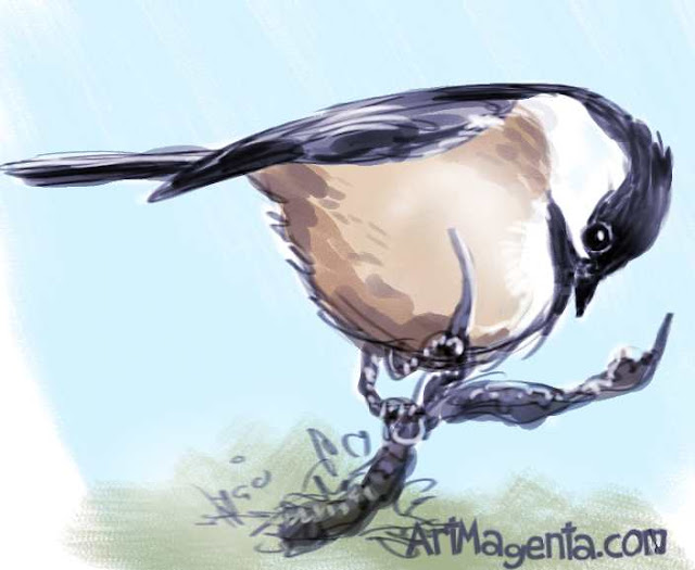 Siberiant Tit sketch painting. Bird art drawing by illustrator Artmagenta