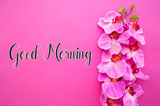Good Morning Royal Images Download for Whatsapp Facebook88