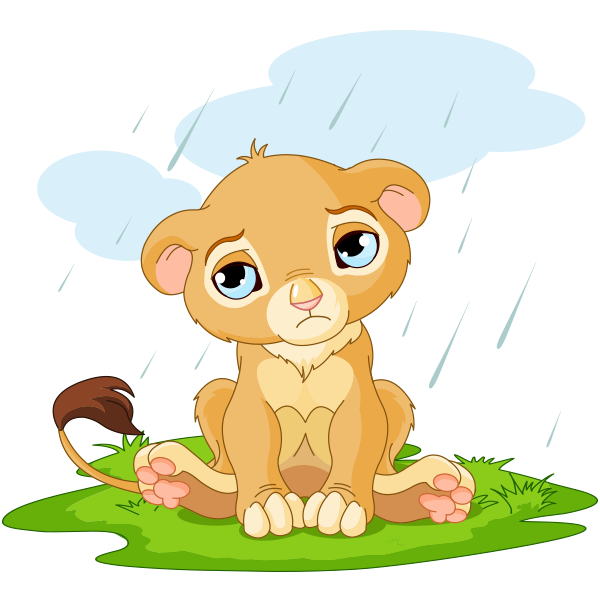 Rainy Day Lion
