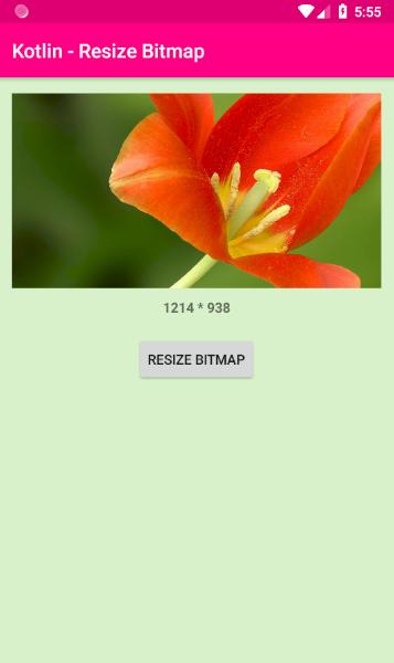 android kotlin - Resize a bitmap