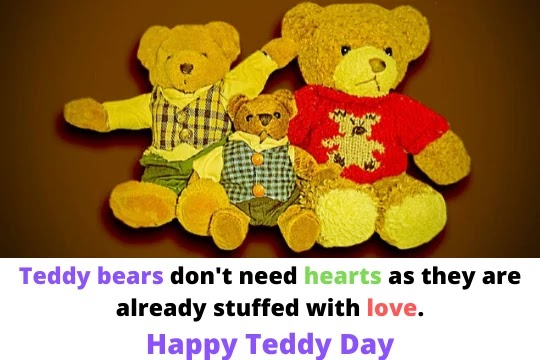 teddy bear quotes for instagram