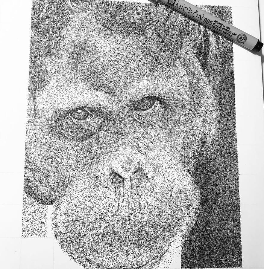 03-Soulful-Orangutan-Kelsey-Hammerton-www-designstack-co