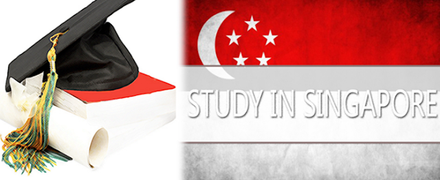 Objective Reviews on Write My Essay Writing Services in Singapore