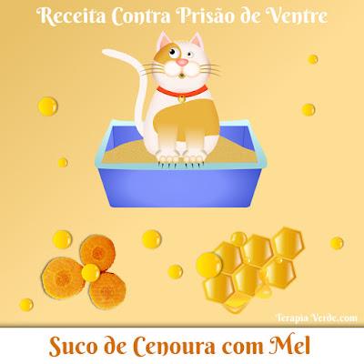 Receita Contra Prisão de Ventre: Suco de Cenoura com Mel